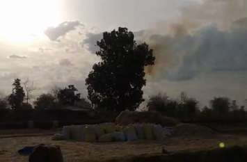 पेड़ में लगी अचानक आग और धूं-धूं कर जलता रहा पेड़