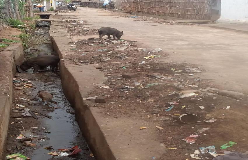 प्रधानमंत्री के स्वच्छ भारत अभियान पर पानी फेर रहा है सुकमा नगरपालिका