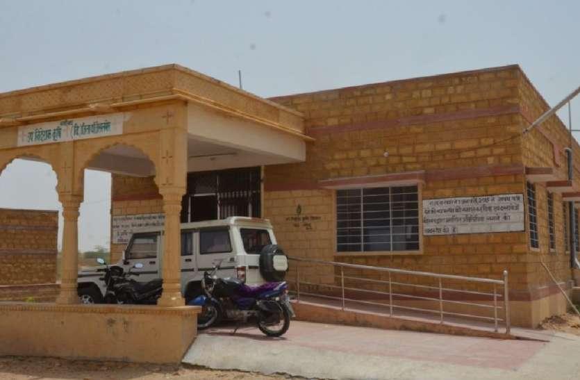 टिड्डियों ने भरवाए सारे रिक्त पद! जैसलमेर के कृषि विभाग में 77 कार्मिकों की पोस्टिंग