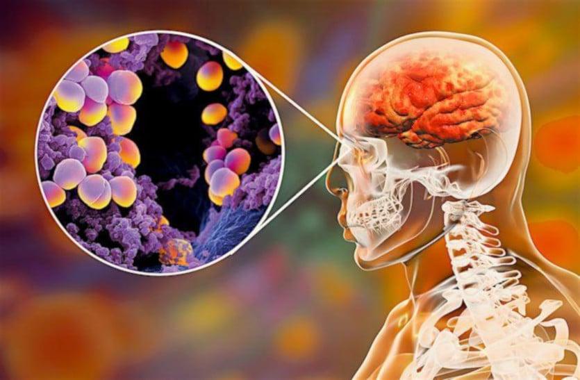 नाक के बैक्टीरिया एंटीबायोटिक बन लड़ेंगे बीमारियों से