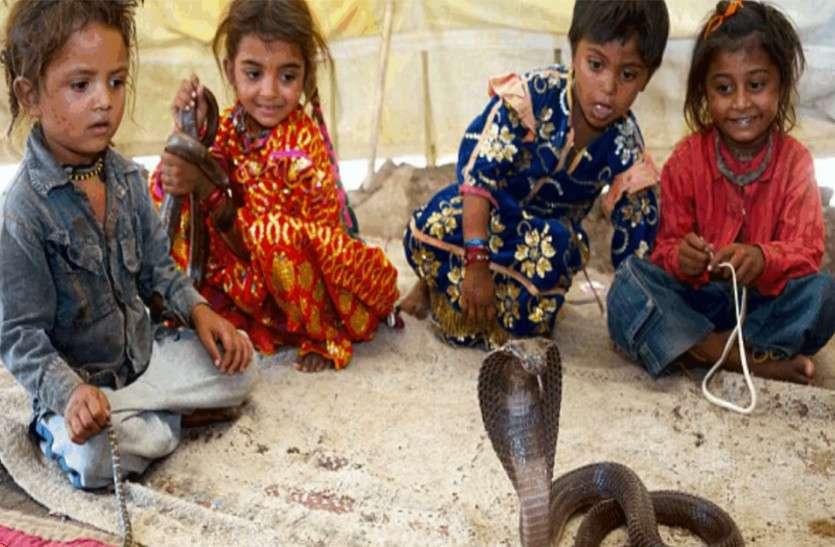 इस गांव के बच्चे खिलौनों से नहीं, खेलते हैं जहरीले सांपों से, हर घर में परिवार के सदस्य की तरह रहते हैं 'नागराज'