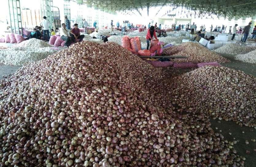 सरकार दे रही ८ रुपए किलो के दाम, फुटकर बाजार में बिक रहा २० रुपए किलो प्याज