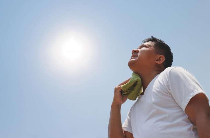 गर्म हवा से फेल हो रहा ब्रेन का सिस्टम, कैलोरी डाइटिंग हो सकती खतरनाक