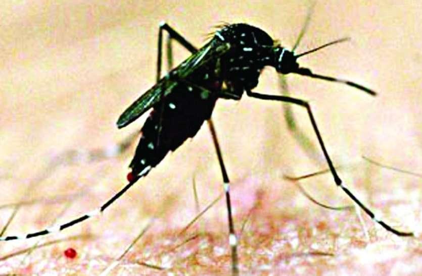 मच्छर मारने पन्ना जिले के 29 ग्रामों में चलेगा अभियान