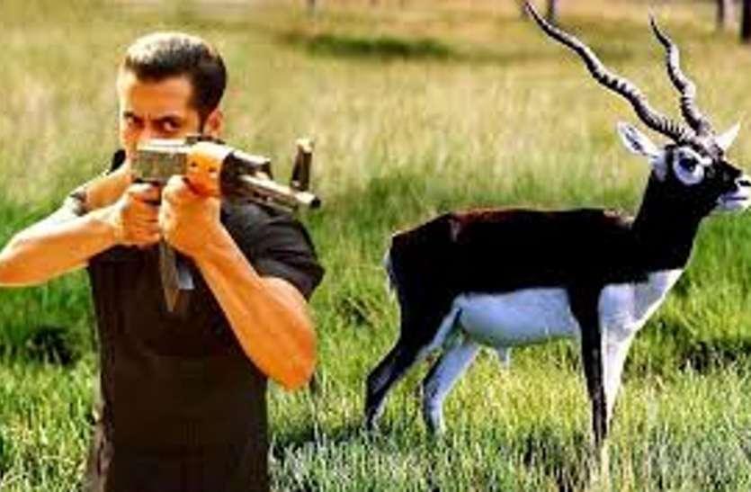 BLACK BUCK HUNTING CASE : सलमान खान हिरण शिकार मामला, वो सब कुछ जो आप जानना चाहते हैं..