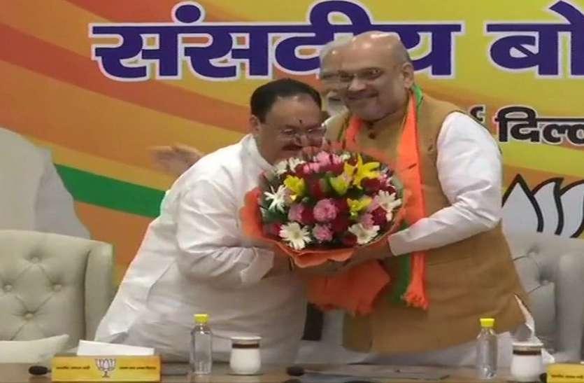 BJP के कार्यकारी अध्यक्ष बने जे पी नड्डा, संसदीय बोर्ड की बैठक में फैसला