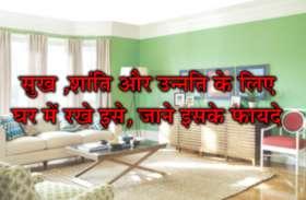 घर के वास्तु दोष को दूर करने और उन्नति को बढ़ाने के लिए घर में करें यह उपाय,खुल जाएगी किस्मत