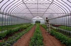 तलावड़ा का कोई भी व्यक्ति नहीं करेगा गोदारा कृषि फार्म पर कार्य