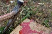 Assam: अंबुवासी मेले के पहले कामाख्या धाम में नरबलि की घटना से सनसनी