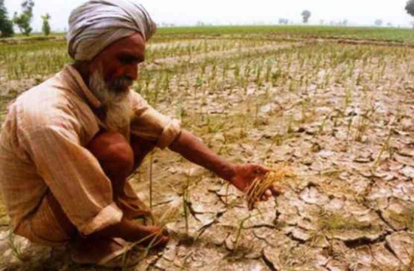 फिसड्डी बहरोड़ के 3 प्रतिशत किसानों ने पार की किस्त की पहली बाधा