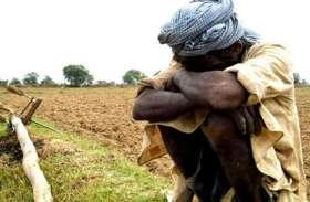 सरकार की घोषणा के बाद भी किसानों पर 471 करोड़ का कर्ज, अब कैसे होगी खेती