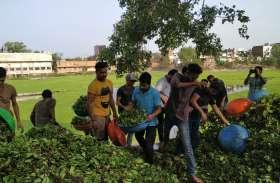 विद्यार्थी परिषद की टीम ने श्रमदान कर निकाली तीन ट्राली जलकुंभी