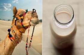 प्रोटीन की कमी को दूर कर देगा ये दूध, होंगे ये 10 फायदे