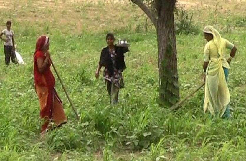 PM Narendra MOdi अब जिले के 392414 किसानों को प्रतिवर्ष देंगेे 2 अरब 35 करोड़ से अधिक रुपए