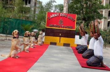 डॉग स्क्वाड टीम ने भी किया योगा, देखने वाले हो उठे रोमांचित
