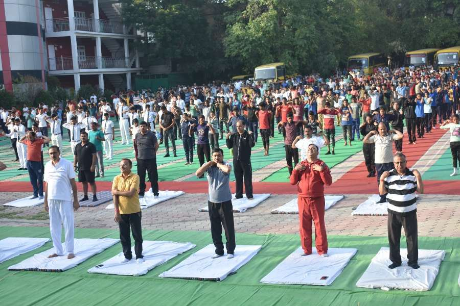 national yoga day news in hindi