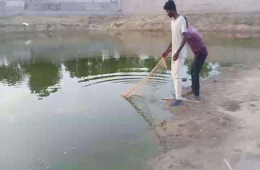 घोड़ासर तालाब में चोरी छिपे मछली पकडऩे का पर्दाफाश