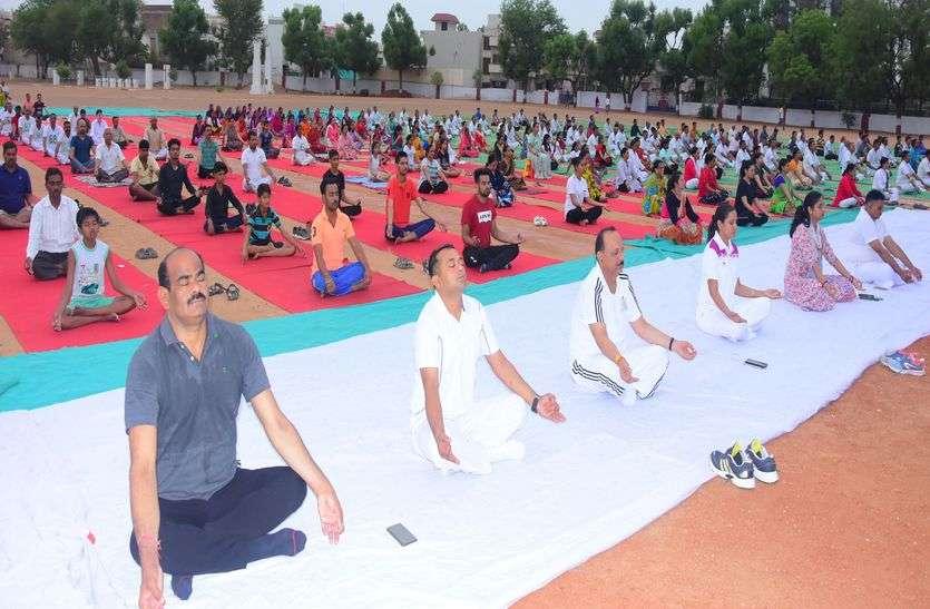 किशनगढ़ एमएलए, एसडीओ, डिप्टी और आम नागरिकों ने मिलकर किया योग