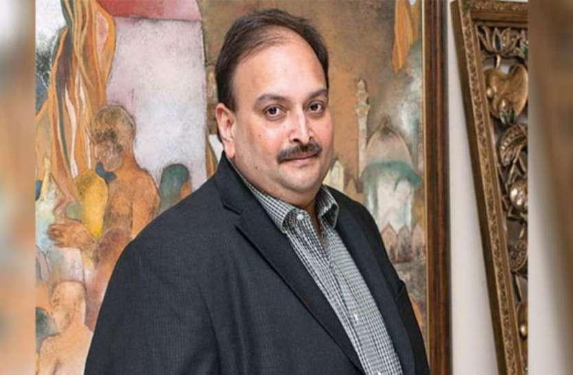 मेहुल चोकसी की पत्नी का बड़ा आरोप, पति का गायब होना सरकार की चाल