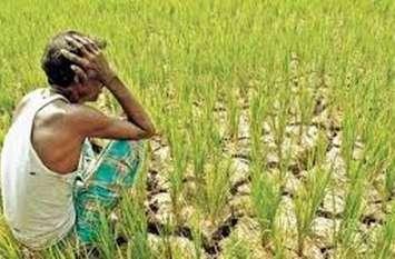 सरकारी अनदेखी ने आदिवासी अंचल के इन क्षेत्रों में किसानों को किया मायूस