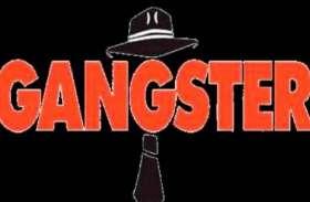 35 अपराधियों के खिलाफ गैंगस्टर ऐक्ट की कार्रवाई, मचा हड़ंकप