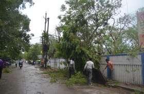 तेज आंधी के साथ हुई बारिश, पेड़ गिरे, चद्दर उड़े...बिजली व्यवस्था ध्वस्त