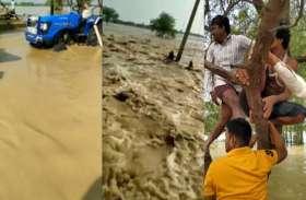 पहले नहीं देखा होगा बाढ़ का ऐसा कहर, जान बचाने के लिए सारी रात पेड़ पर बैठे रहे 5 युवक, देखें वीडियो