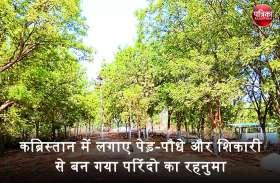 लोगों से पापी शब्द सुन-सुनकर हो उठा बैचेन, फिर कब्रिस्तान में लगाए पेड़-पौधे और शिकारी से बन गया परिंदो का रहनुमा