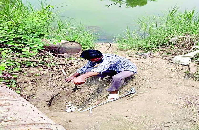 बैस नदी किनारे मगरमच्छों ने दिए अंडे, निकल रहे बच्चे