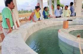 मछली पालन से बढ़ रही किसानों की आय