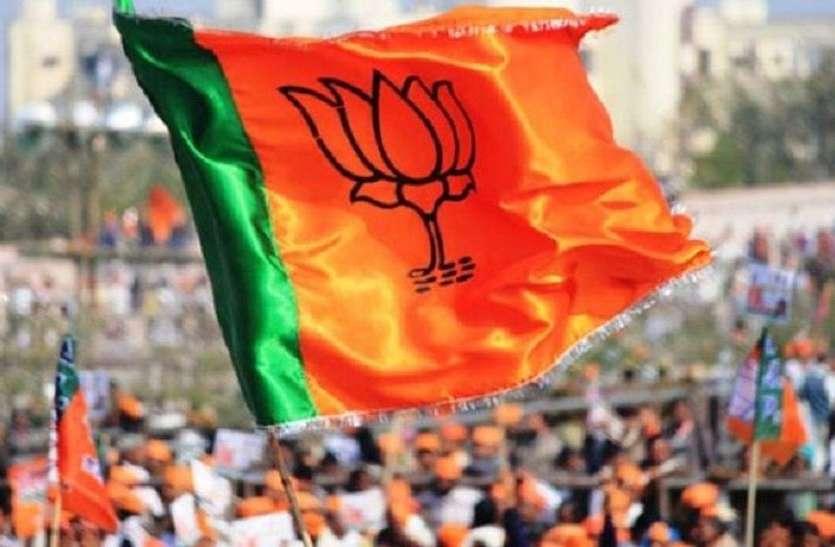 Politics : भाजपा आम तौर पर वही करती है, जिसमें उसका फायदा होता है