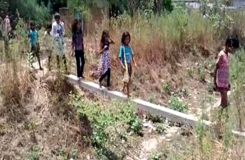इस गांव में जाने के लिये सड़क तक नहीं, खेतों से गुजरते ग्रामीण, देखें वीडियो