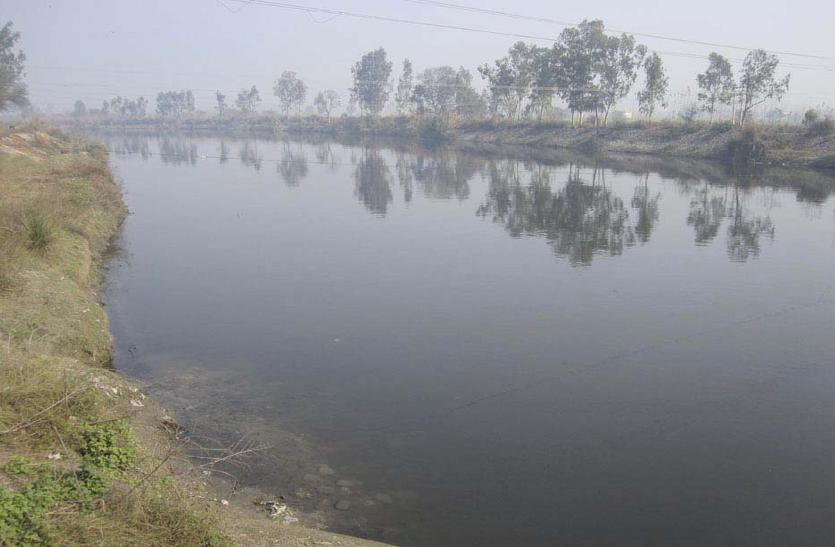 दिल्ली और दक्षिणी हरियाणा के हिस्से का पानी हो रहा गंदा