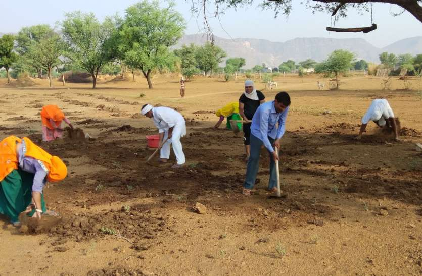 जयपुर ग्रामीण : मानसून की दस्तक, बुवाई की तैयारी में जुटे धरती पुत्र