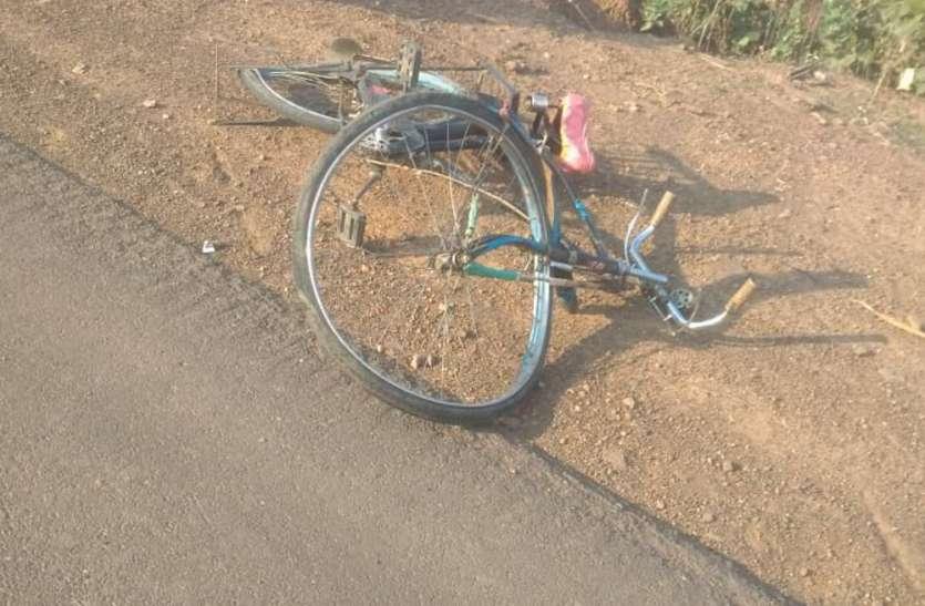 भाजयुमो नेता की कार से साइकिल सवार की मौत