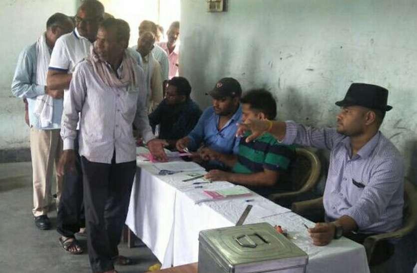 संचालक मंडल के लिए एक हजार सदस्यों ने किया मतदान,10 संचालक सदस्यों का निर्वाचन