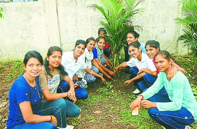 हरियाली बचाने का जज्बा: निम्बोली लगाकर कर रहे प्रकृति की रक्षा पर्यावरण मित्र
