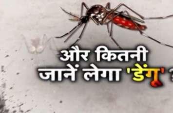 छत्तीसगढ़ में फिर मिले डेंगू के चार मरीज, मचा हड़कंप, 21 दिनों में हुई थी 24 की मौतें