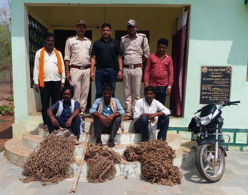 जंगली जानवरों के शिकारियों को जाल सहित पकड़ा