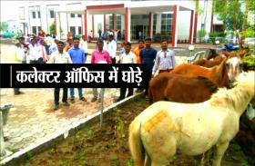 Unique style of protest: घोड़ों को लेकर कलेक्टर ऑफिस पहुंच गए किसान