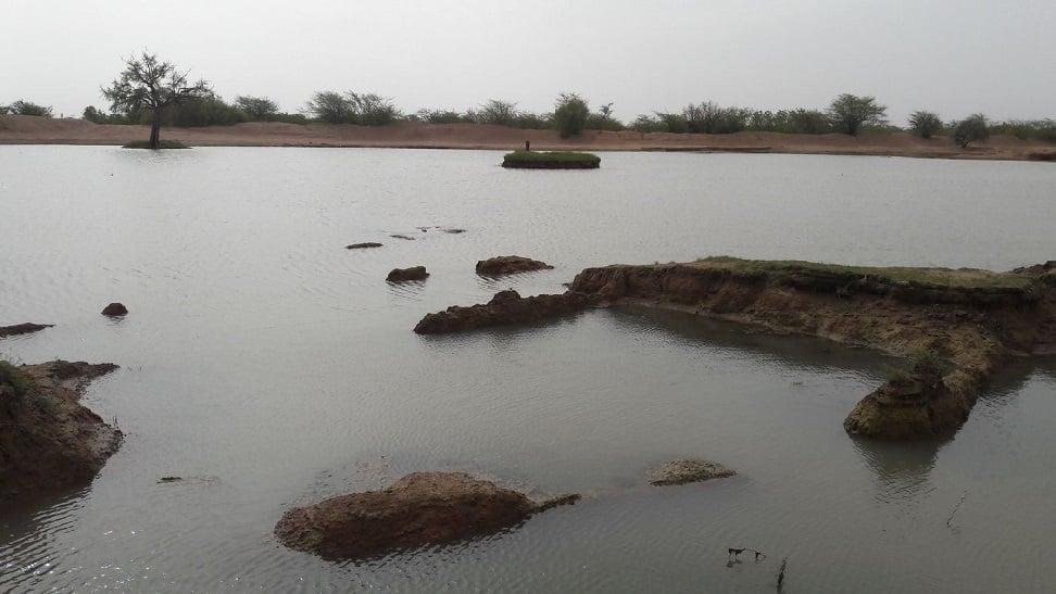वजूद के लिए जूझ रहे तालाब, नौका विहार-फव्वारे बंद, मिल रहा ड्रेनेज का पानी