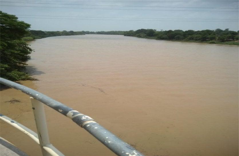 video: बारिश के बाद बीना नदी हुई लबालब, अब नहीं होगी पानी की किल्लत