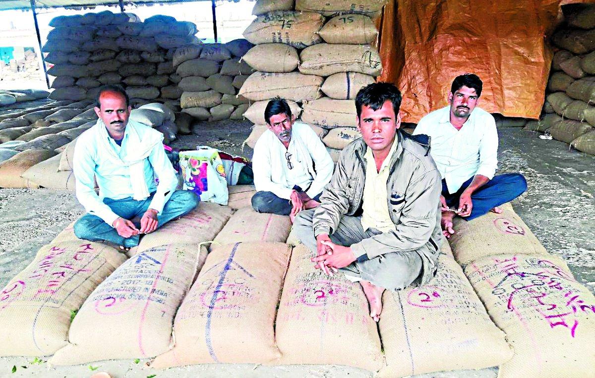 इ-अनुज्ञा के विरोध के चलते किसानों की फजीहत, चार दिनों से अनाज लेकर मंडी में बैठे हैं किसान