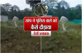 सांप ने पुलिस वाले को कैसे दौड़ाया, देखें वीडियो