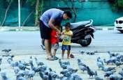 जयपुर में देखने मिलता है पक्षी प्रेम