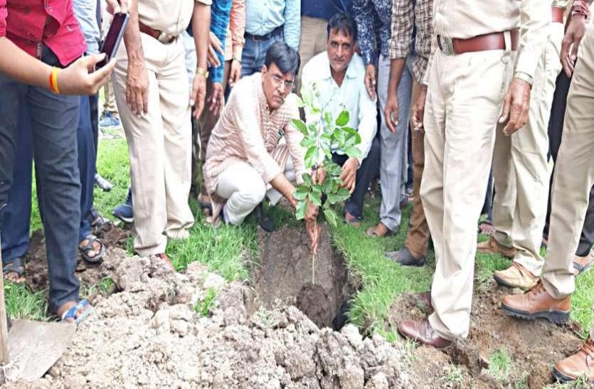 भावनगर :केन्द्रीय मंत्री मांडविया ने किया पौधारोपण