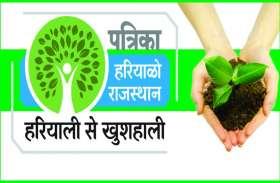 'प्रकृति का शृंगार हैं पेड़-पौधे, इनका संरक्षण है जरूरी