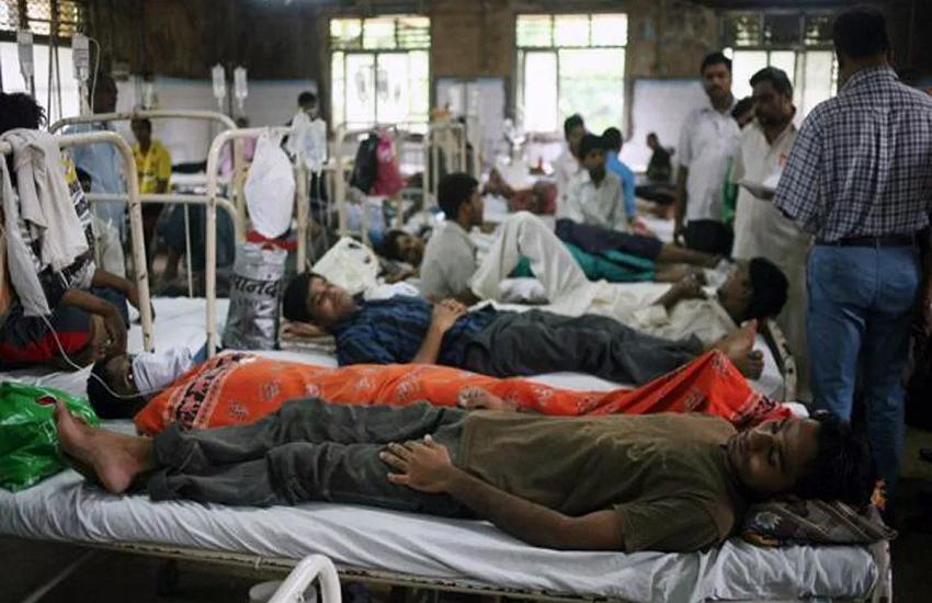Japanese Encephalitis in Assam