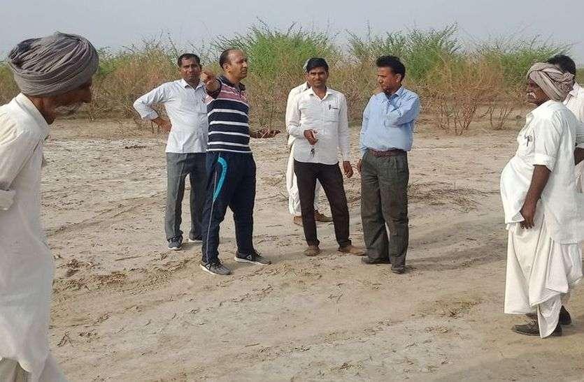 नेहड़ में टिड्डी के सफाए के लिए पहुंची टीमें ऐसे कर रही काम...