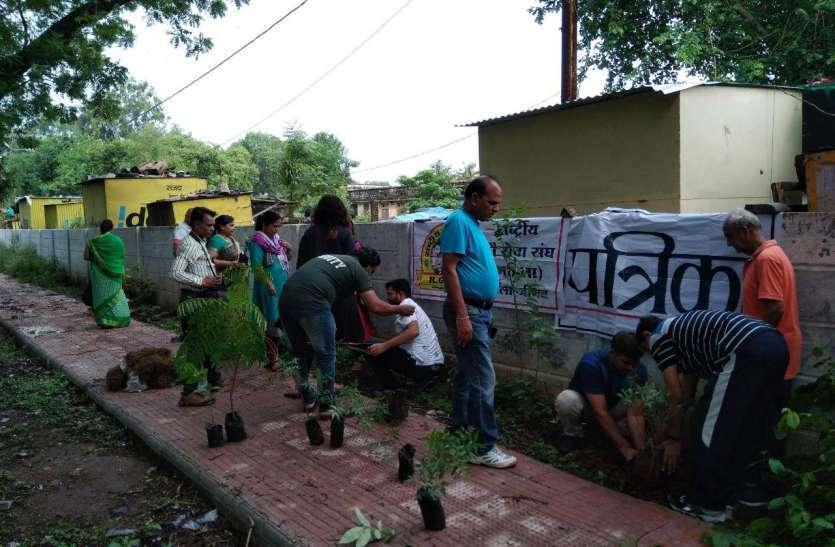 पीपल और नीम के पौधे लगाकर की हरितप्रदेश अभियान की शुरूआत